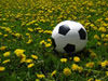 Esportes, Lazer e diversão